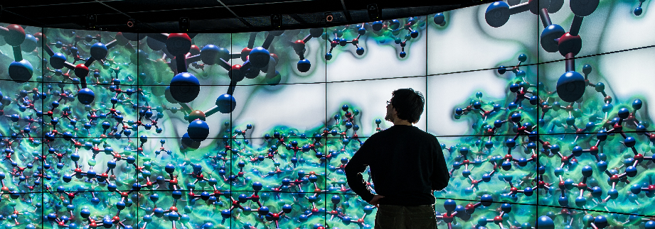 Large Scale Visualization System