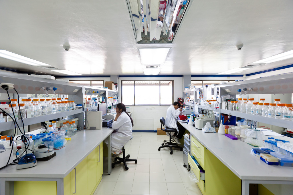 Inside the International Rice Research Institute